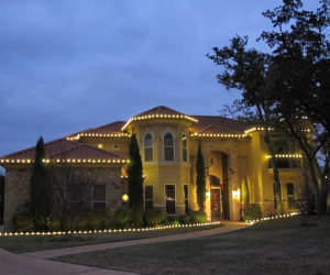 Staked Flower Bed Lights