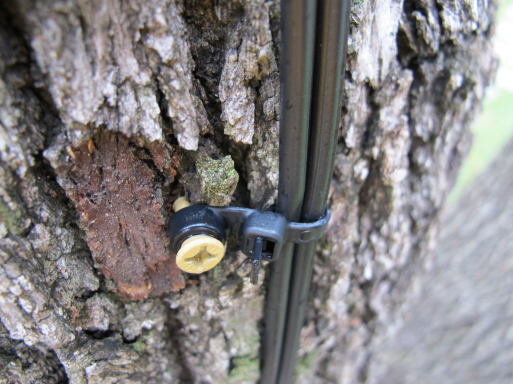 tree safe cable mounts