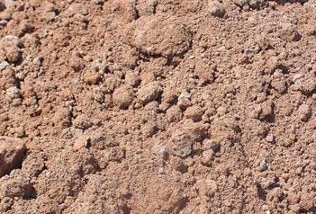 Austin clay soil image