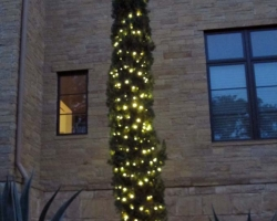 Italian Cypress Warm White Holiday Light Wrap