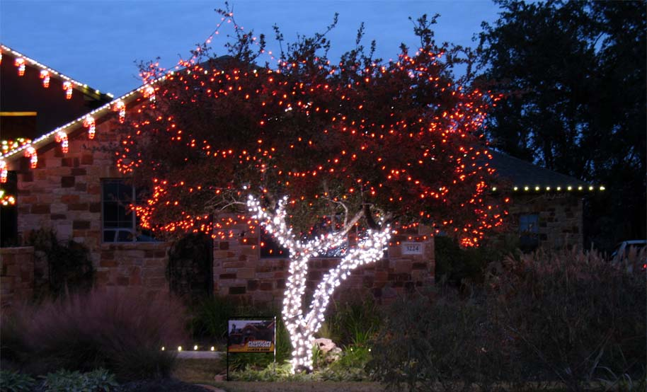 Tree Wrap With Red White Leds
