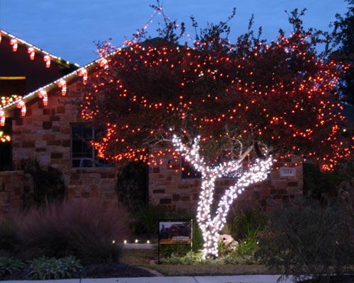 holiday decor and tree lighting