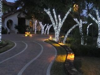 Warm White Tree Wrap