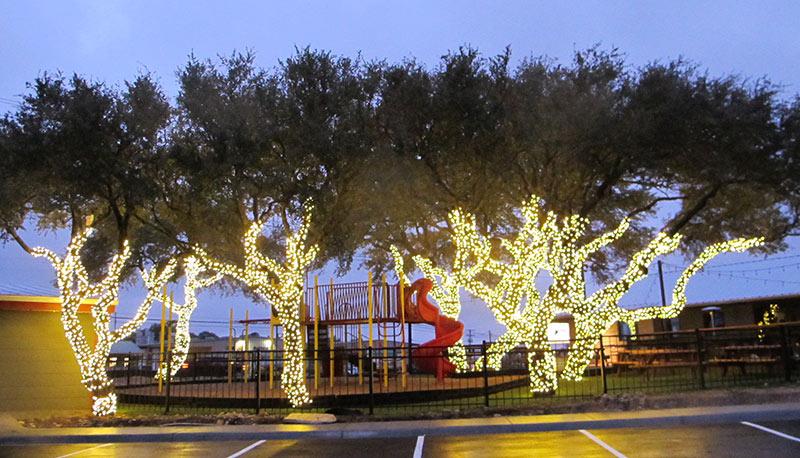 Christmas Lights In Austin Tx