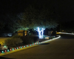 Brodie Springs Entry Bed Christmas Lights