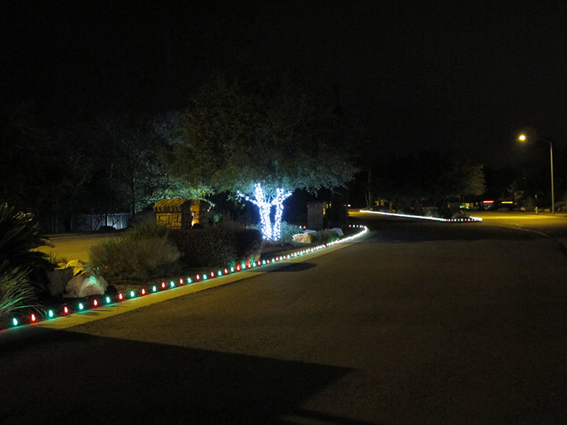 A Christmas tree wrapping and driveway lighting project in Brodie Springs.
