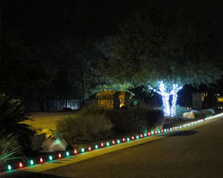 holiday flower bed lights