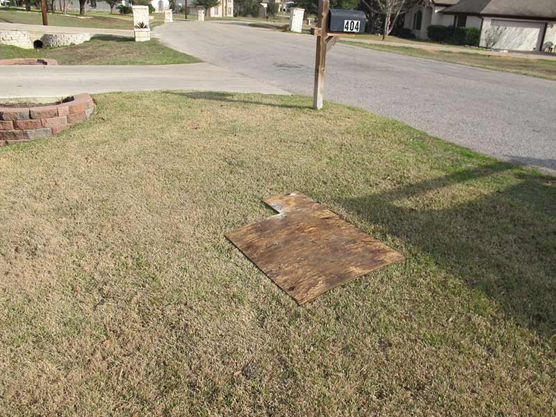 41aba833d9 Top Dressing in Austin, TX: Like Organic Steroids for Your Lawn!