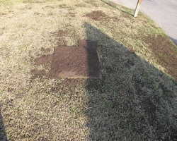 Lawn Top Dressing: Step 2